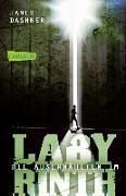 Cover-Bild zu Dashner, James: Die Auserwählten - Im Labyrinth