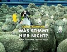 Cover-Bild zu Baumann, Frank: Was stimmt hier nicht?