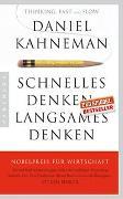 Cover-Bild zu Kahneman, Daniel: Schnelles Denken, langsames Denken