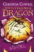 Cover-Bild zu How to Train Your Dragon: How to Seize a Dragon's Jewel (eBook) von Cowell, Cressida