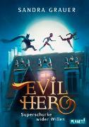 Cover-Bild zu Grauer, Sandra: Evil Hero