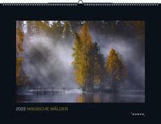 Cover-Bild zu KUNTH Verlag (Hrsg.): Magische Wälder 2022