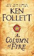 Cover-Bild zu A Column of Fire von Follett, Ken