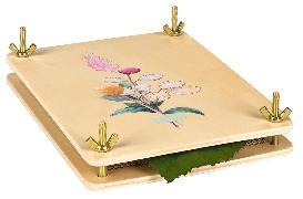 Cover-Bild zu Blatt & Blüte Blatt- und Blütenpresse