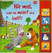 Cover-Bild zu Hör mal, wer da miaut und bellt! von Schuld, Kerstin M. (Illustr.)