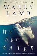 Cover-Bild zu We Are Water von Lamb, Wally