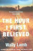 Cover-Bild zu The Hour I First Believed von Lamb, Wally