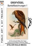 Cover-Bild zu Atelier-Kalai-Media, Bild-Kunst-Verlag (Hrsg.): Greifvögel : Buntstiftzeichnungen 1