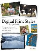 Cover-Bild zu Digital Print Styles Recipe Book (eBook) von Daly, Tim