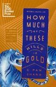 Cover-Bild zu How Much of These Hills Is Gold (eBook) von Zhang, C Pam