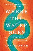 Cover-Bild zu Where the Water Goes (eBook) von Owen, David