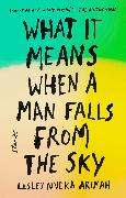 Cover-Bild zu What It Means When a Man Falls from the Sky (eBook) von Arimah, Lesley Nneka