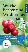 Cover-Bild zu Dreyer, Eva-Maria: Welche Beeren und Wildkräuter sind das?