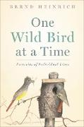 Cover-Bild zu One Wild Bird at a Time (eBook) von Heinrich, Bernd