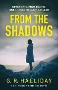 Cover-Bild zu From the Shadows (eBook) von Halliday, G. R.