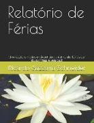 Cover-Bild zu Relatório de Férias: Um Relato Divertido Da Rotina de Duas Meninas Em Férias No Inverno de 2013 von Schneider, Ricardo Gazzana
