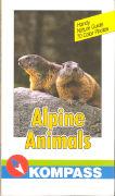 Cover-Bild zu Alpine Animals von Jaitner, Christine