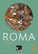 Cover-Bild zu ROMA B Prüfungen 3 von Englisch, Christina (Hrsg.)