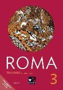 Cover-Bild zu ROMA B Training 3 mit Lernsoftware