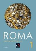 Cover-Bild zu Roma B 1 Wortschatztraining