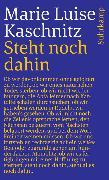 Cover-Bild zu Steht noch dahin von Kaschnitz, Marie Luise