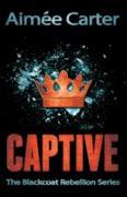 Cover-Bild zu Captive (eBook) von Carter, Aimee