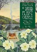 Cover-Bild zu The Druid Plant Oracle von Carr-Gomm, Philip