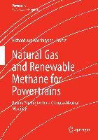 Cover-Bild zu Natural Gas and Renewable Methane for Powertrains von Basshuysen, Richard van (Hrsg.)