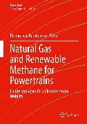 Cover-Bild zu Natural Gas and Renewable Methane for Powertrains (eBook) von van Basshuysen, Richard (Hrsg.)