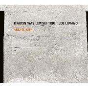 Cover-Bild zu Arctic Riff von Wasilewski, Marcin