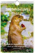 Cover-Bild zu Seelenbilder-Kalender 2022 von Schirner, Markus