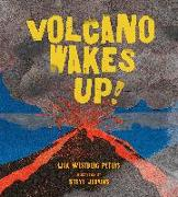 Cover-Bild zu Volcano Wakes Up! von Peters, Lisa Westberg