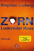 Cover-Bild zu Zorn - Lodernder Hass von Ludwig, Stephan