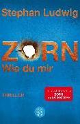 Cover-Bild zu Zorn - Wie du mir von Ludwig, Stephan