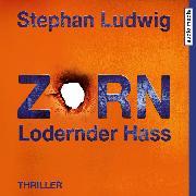 Cover-Bild zu Zorn 7 - Lodernder Hass (Audio Download) von Ludwig, Stephan