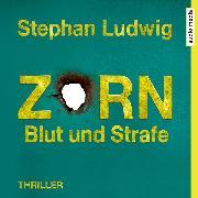 Cover-Bild zu Zorn 8 - Blut und Strafe (Audio Download) von Ludwig, Stephan