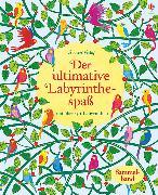 Cover-Bild zu Der ultimative Labyrinthespaß von Robson, Kirsteen