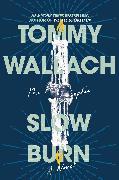 Cover-Bild zu Slow Burn von Wallach, Tommy