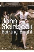 Cover-Bild zu Burning Bright (eBook) von Steinbeck, John