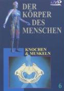 Cover-Bild zu Teil 6: Knochen und Muskeln - Der Körper des Menschen