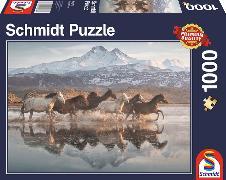 Cover-Bild zu Pferde in Kappadokien