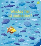 Cover-Bild zu Welches Tier ist anders hier? von Penners, Bernd