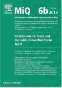 Cover-Bild zu MIQ 06b: Infektionen der Haut und der subkutanen Weichteile von Becker, Karsten
