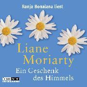 Cover-Bild zu Ein Geschenk des Himmels (Audio Download) von Moriarty, Liane