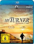 Cover-Bild zu Mr. Turner - Meister des Lichts von Leigh, Mike