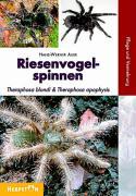 Cover-Bild zu Riesenvogelspinnen von Auer, Hans-Werner