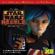 Cover-Bild zu Disney/Star Wars Rebels - Folge 10 (Audio Download) von Bingenheimer, Gabriele