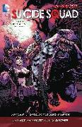 Cover-Bild zu Suicide Squad Vol. 4: Discipline and Punish (The New 52) von Kot, Ales