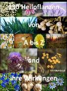 Cover-Bild zu Was sind Heilpflanzen und ihre Wirkungen? (eBook) von Kloss, Martina