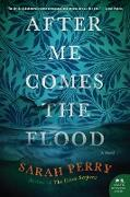 Cover-Bild zu After Me Comes the Flood (eBook) von Perry, Sarah